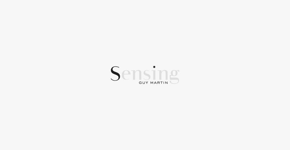 Brand Visual Advertising for Sensing Guy Martin
